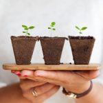Je website laat jouw bedrijf groeien